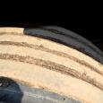 Грузовик бортовой тентованный МАЗ 631019-420-031